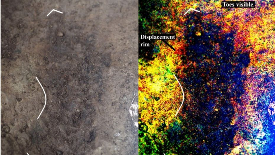 Oldest human footprints in North America discovered in Canada