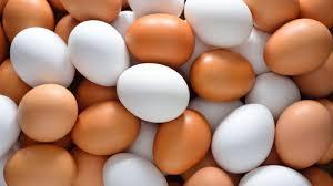 eggs good or bad, health news