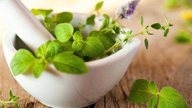 ayurvedic herbs, health, weight loss