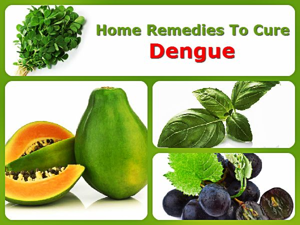 Basil Leaves, Neem, Beetroot, Papaya, Home Remedies, Dengue