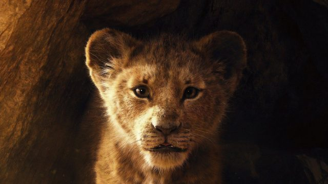 The Lion King Box Office Collection Day 1: Disney live-action movie to earn this much