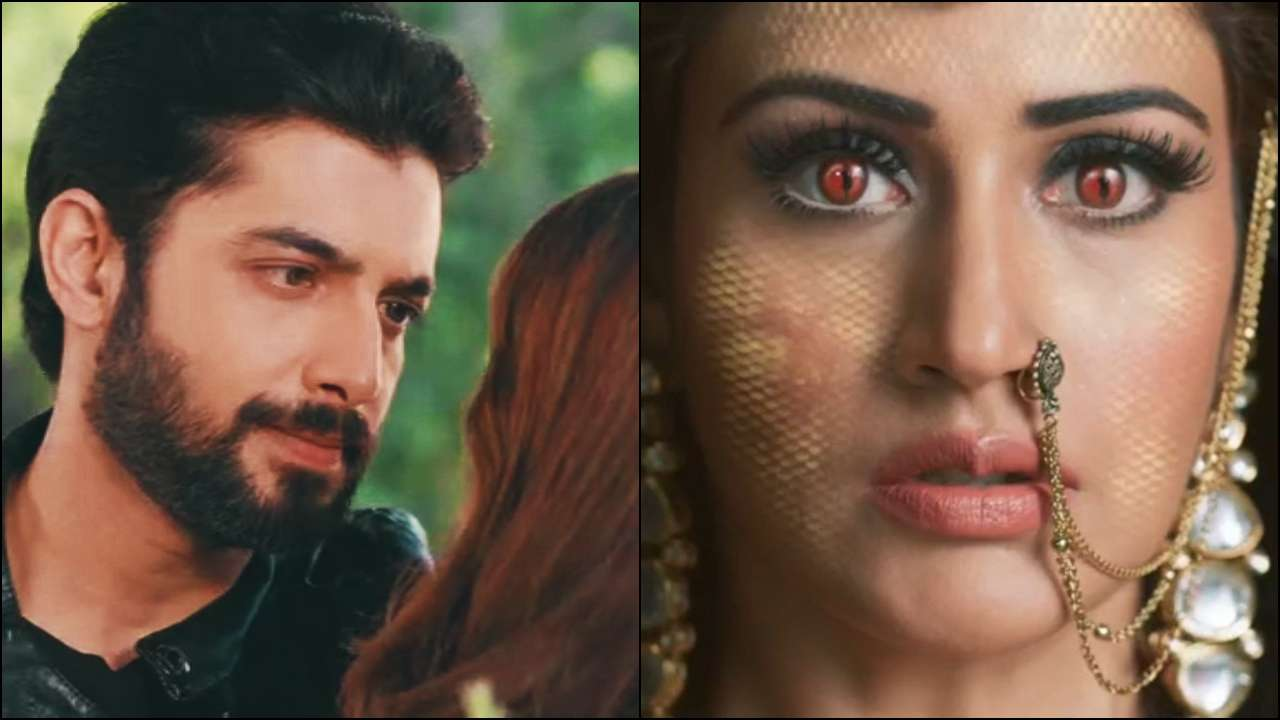 Naagin 5 Written Update 17th October Latest Today Episode: Shukla Why Blad in Kalyug