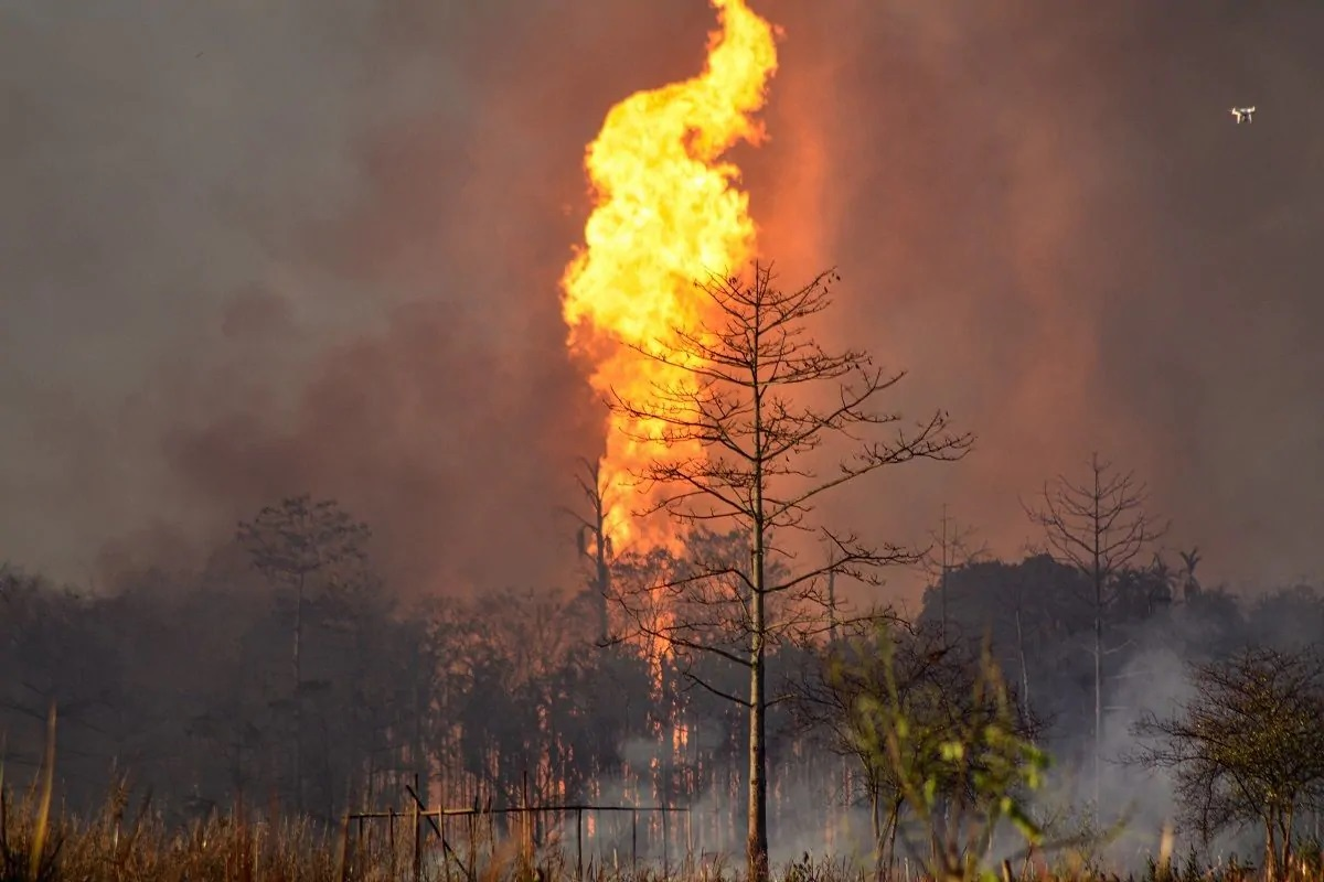 Baghjan Oil Well Burning From Last Five Months Images Videos